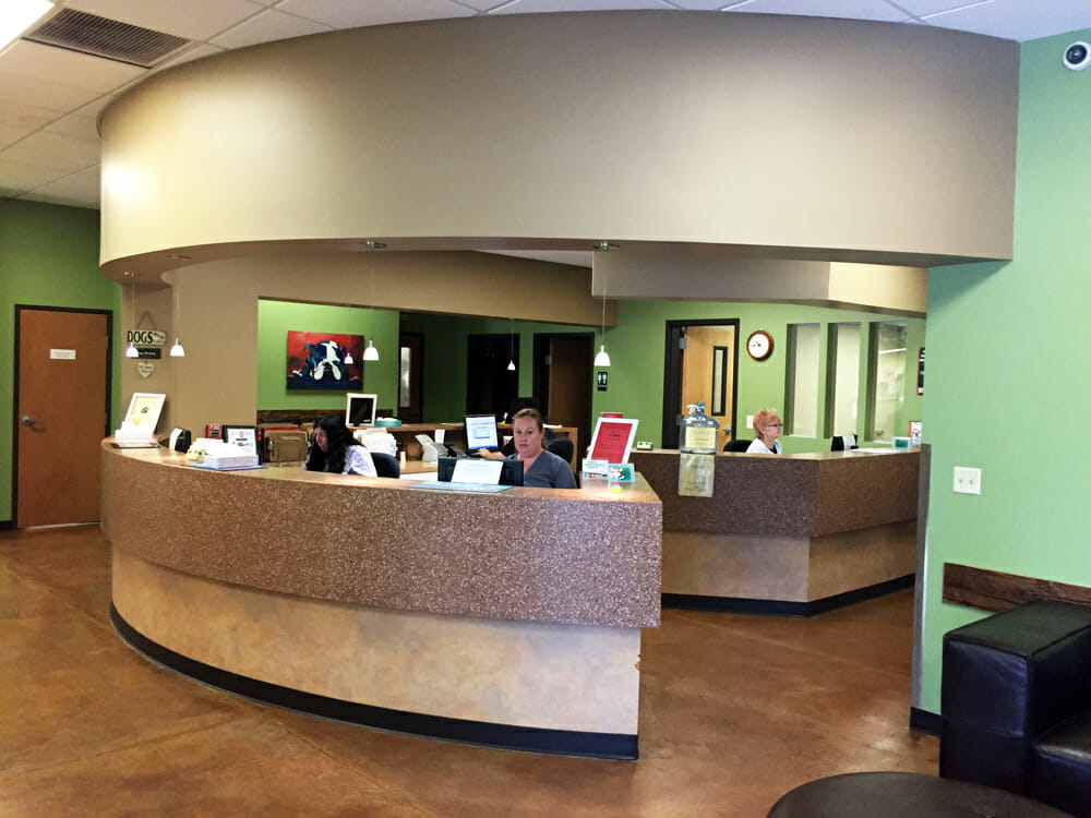 Ocotillo Animal Clinic Interior | Expansion